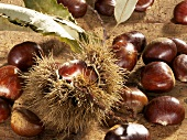 Still life with sweet chestnuts