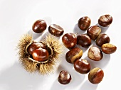 Sweet chestnuts, one with prickly case