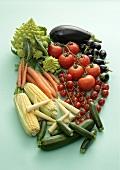 Mini und Maxi - Gemüse
