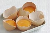 Eggs, broken open, in their shells