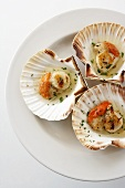 Oven-baked scallops