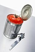 Fresh tomato in opened tin