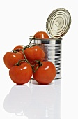 Opened tomato tin with fresh tomatoes