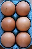 Sechs Eier in der Schachtel