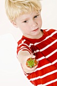 Blond boy with a strawberry in his hand