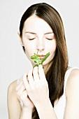 Woman smelling fresh basil