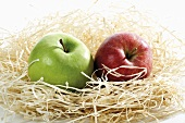 Two apples in a nest of wood wool