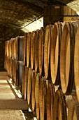 Wine barrels in Jean-Louis Trapet's wine cellar, Burgundy