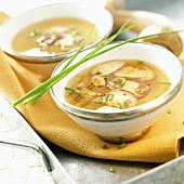Cep soup in two bowls