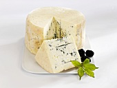A blue cheese with a piece cut and blackberries