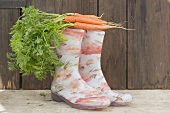 Carrots on top of rubber boots