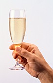 Hand holding champagne flute of sparkling wine