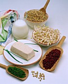 Soya products