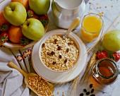 Vollwert-Frühstück mit Obst, Saft, Milch, Müsli und Honig