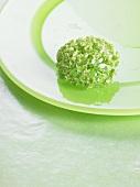 Flower on green plate