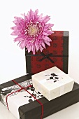 Gifts in Asian wrapping paper