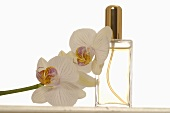 Perfume and orchid flowers
