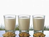 Rice milk, oat milk and nut milk in glasses