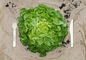 Lettuce on paper with knife and fork