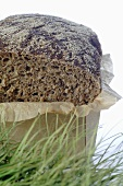 Wholegrain bread in cardboard box, grass in foreground