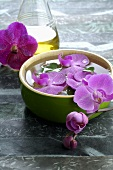 Orchid flowers in bowl of water