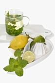 Peppermint tea, lemon, lime and citrus squeezer