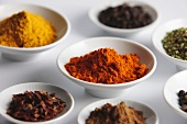 Various exotic spices in porcelain dishes
