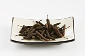 Long pepper (Piper longum) in a porcelain dish