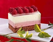 Raspberry yoghurt slice