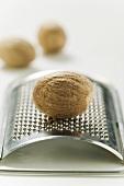 Nutmeg on grater