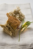 Pieces of white bread on linen cloth beside olive sprig