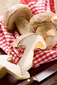 Three ceps, one halved, on wooden board with cloth