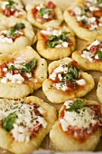 Mini-pizzas with tomatoes, cheese and basil