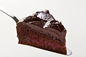 Slice of chocolate cake on cake server