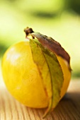 Yellow plum with leaves