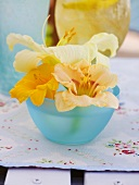 Day lilies in blue bowl