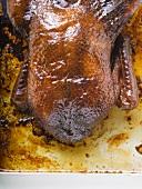 Crispy roast duck (overhead view)