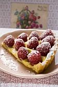 Piece of raspberry tart with vanilla cream