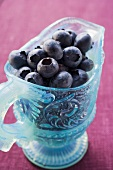Fresh blueberries in light blue glass jug