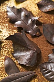 Several different chocolate leaves on cocoa powder (overhead)