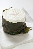 Goat's cheese in chestnut leaf