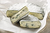 Blue cheese with pieces cut on paper