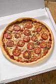 Cheese and tomato pizza with oregano in pizza box