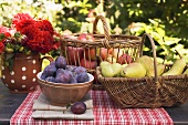 Plums in bowl, pears and apples in basket on garden table