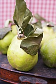 Quinces with leaves on tray