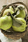 Fresh quinces with leaves in a basket