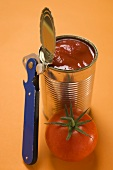 Fresh tomato beside opened food tin