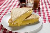 Toasted cheese sandwiches on plate, vinegar, oil, seasonings