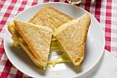 Toasted cheese sandwich, cut in two, on plate