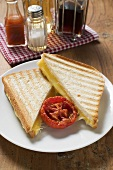 Toasted cheese sandwiches & grilled tomato on plate,  seasonings